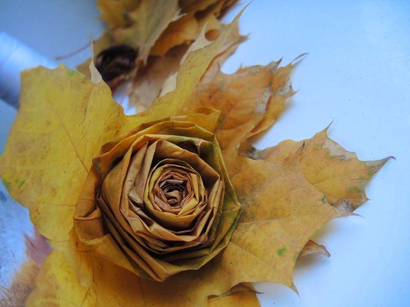 поделки из листьев своими руками фото осень выбрал клей отдушкой